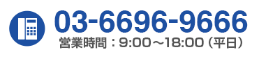 03-6696-9666